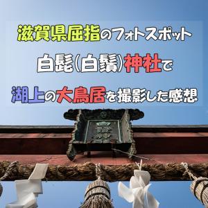 滋賀県屈指のフォトスポット白髭(白鬚)神社で湖上の大鳥居を撮影した感想
