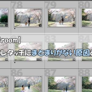 【Lightroom】写真のレタッチにまとまりがない原因と対策