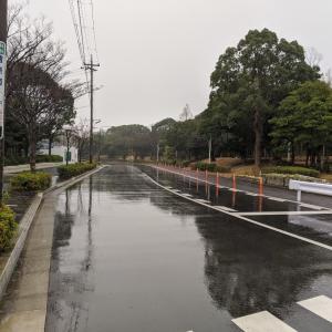 雨だし〜寒いし〜
