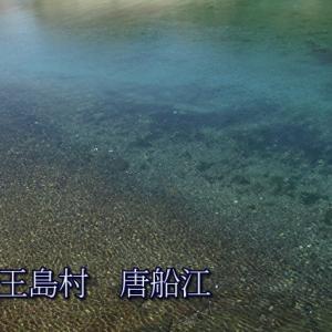 伊王島の大河? 唐船江
