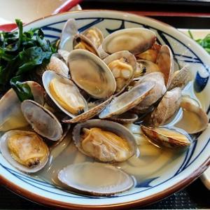 丸亀製麺の春のあさりうどん☆