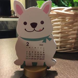 記録ダイエット 第39日 2月19日(水)