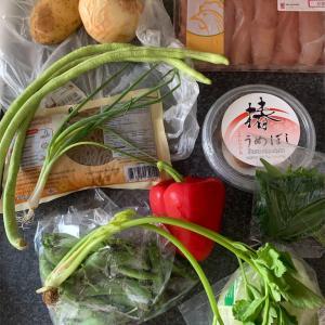 シソ巻き梅鶏、ジャガイモ煮、豆とパプリカのサラダ