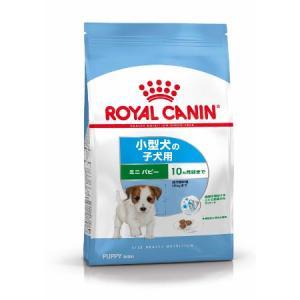 犬に絶対に与えてはいけない!やばい日本のドッグフード