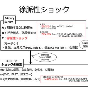 【救急】徐脈性ショック フローチャート