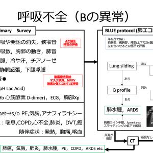 【内科救急】呼吸不全診療フローチャート【Bの異常】