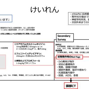 【内科救急】けいれん診療フローチャート
