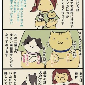自己+猫紹介