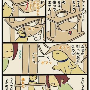 猫タワーのハンモック