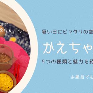 暑い日にピッタリの室内遊び「かえちゃ0h!!」5種類と魅力を紹介!