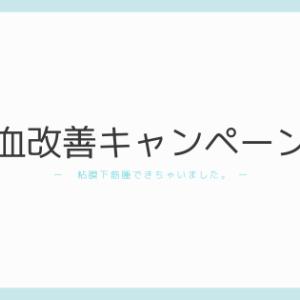 貧血改善キャンペーン② 漢方を試す