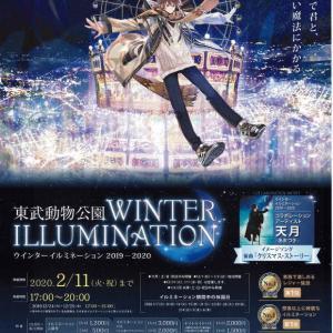 冬のイルミネーション!