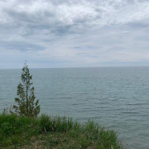 お散歩〜曇り空とどんやり湖