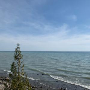 湖散歩と一芸