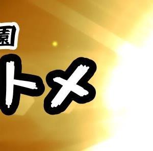 今年、最後の決断!令和元年12月31日(火) スタート