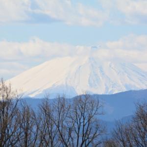 お気に入りの丘の上から富士山を眺めに行ったけれど