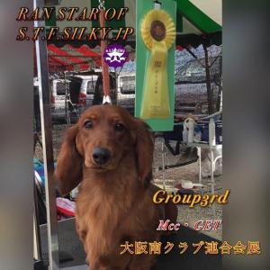 大阪南三国愛犬クラブ展&大阪南クラブ連合会展