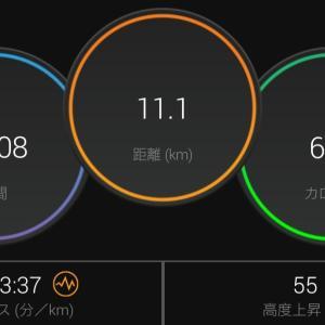 2回目のアルファフライで11.1kmペース走