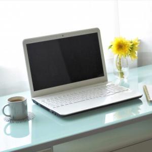【WordPressブログ運営1年8ヶ月】PV数や収益のご報告。