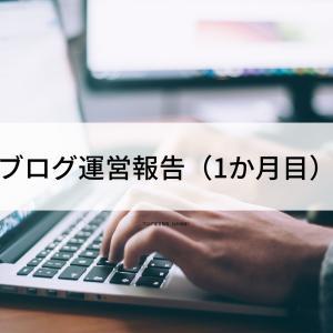 ブログ運営報告(1か月目)