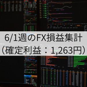 6/1週のFX損益集計(確定利益:1,263円)