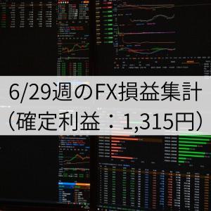6/29週のFX損益集計(確定利益:1,315円)