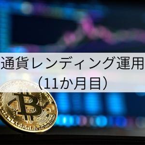 仮想通貨レンディング運用報告(11か月目)