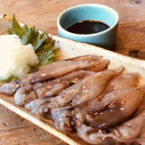 冷凍便のお刺身ホタルイカ到着そのまま実食!?笑 リピーター「タワシ」が本気で伝える一番の食べ方!