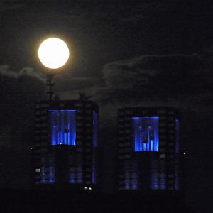都庁の上に満つる月