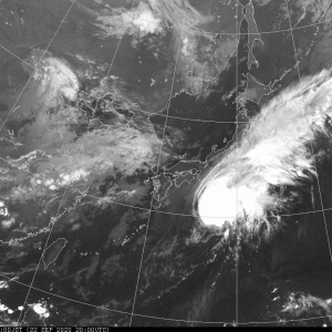 台風12号。ドルフィンというよりは…