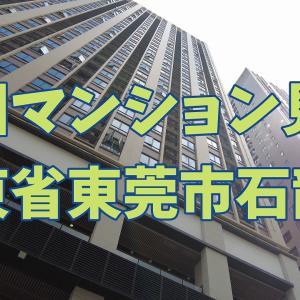 中国広東省東莞市石龍鎮のマンション見学。 Tour of an apartment in Shilong Town, Dongguan City, Guangdong Province, China.