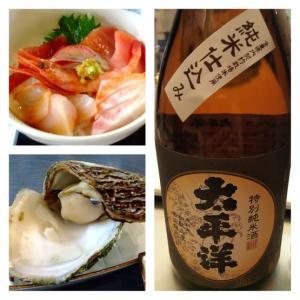【灼熱の近場探検】紀宝町の海鮮丼&鬼ケ城&谷瀬の吊橋など