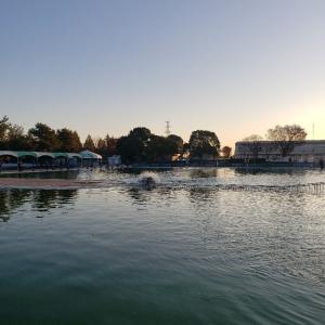 極寒!今季の川越水上公園攻略法。