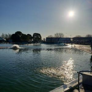 今季最後⁉️川越水上公園釣行。