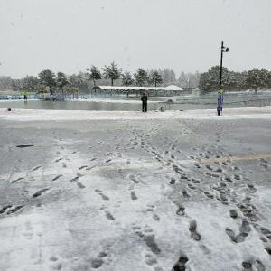 春なのに・・・大雪のあの場所釣行。