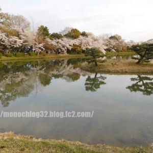 2020年春 大沢池②(桜)