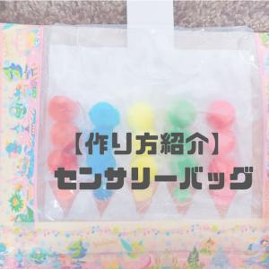 【作り方紹介】 センサリーバッグ