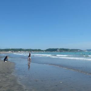 海水浴場の開設中止を鎌倉市が発表。海の家も建設されない