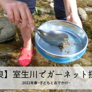 【奈良】室生川で宝石・ガーネットを探してみました!~2021年春・子どもとおでかけ~