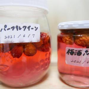【梅酒&梅シロップ】今年は「パープルクイーン」でピンク色のかわいい梅ドリンクを!~2021年6月~