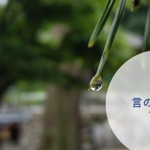 『言の葉の庭』雨の日の美しくも悲哀の出会い!誰にも想い出のページがあるはず:コラム的映画あらすじ評価感想・動画配信