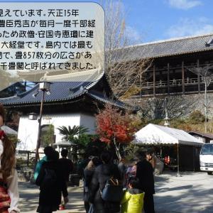 宮島からのレポート その4 今回は紅葉谷公園方面です。
