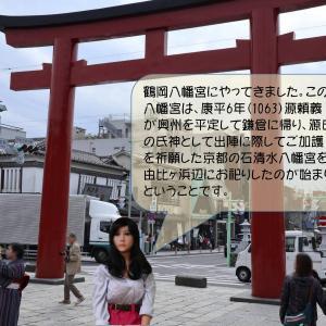 鶴岡八幡宮を訪れたエイミー。アイビーの歴史教室もあります。(リニューアル版)