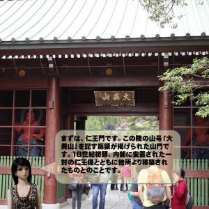 鎌倉大仏を訪れたララちゃん、歴史教室もあります。テーマは、鎌倉新仏教です。(再掲載)