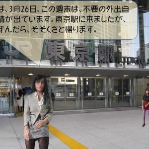 3月26日、東京駅にアイビーがやってきました。(用事が済んだら、即帰ります)
