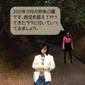 2001年11月の奈良公園にやってきたララ。