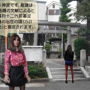 アイビーが墨田区亀戸にある亀戸水神宮をレポートします。