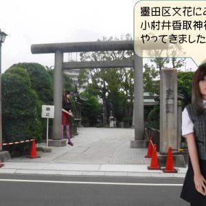 墨田区文花にある小村井香取神社をアイビーがレポートします。