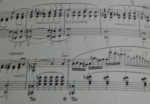 ピアノレッスン(アヒルの行進‼)