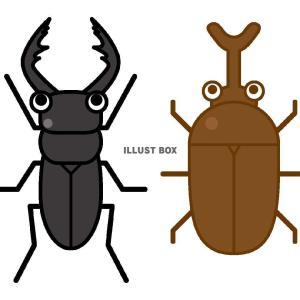 夏は虫たちが主役。なんだけど…。